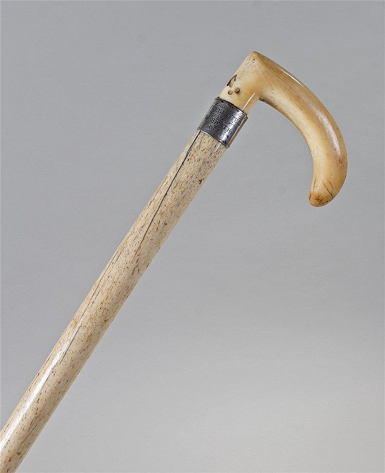Late 19th Century whalebone walking stick, the curved top above a white met