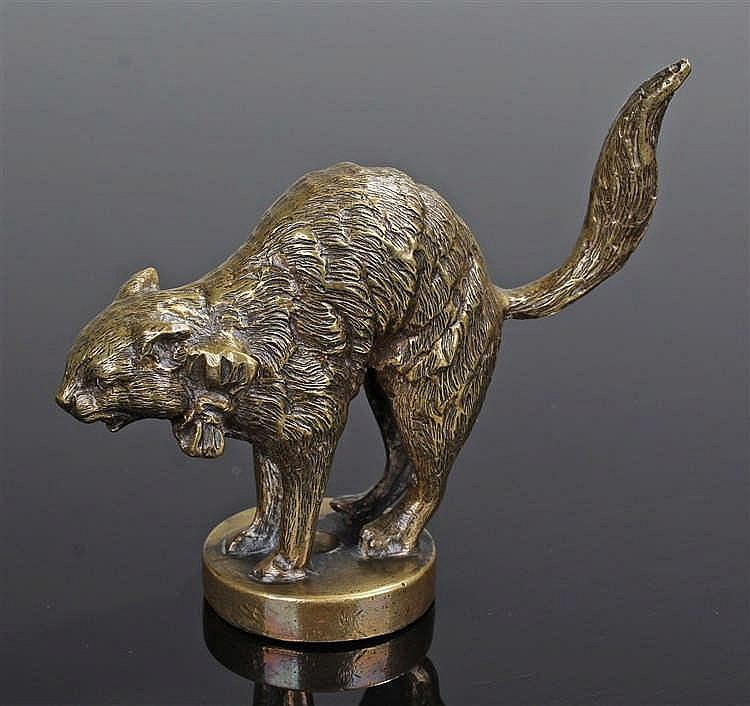 Early 20th Century brass car mascot, in the form of a startled cat with a b