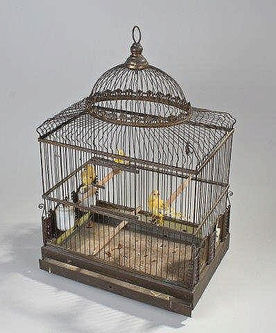 Ornate Victorian Bird Cage Made Of Brass With Colo