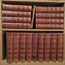 Appleton's 1873-75 Premium Edition of The American Cyclopaedia - 17 Vol Bound in Full Leather