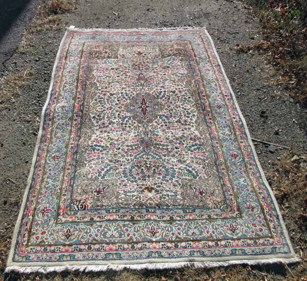 Old Persian Ivory Field Oriental Rug, 100 By 60 Inches. Cond