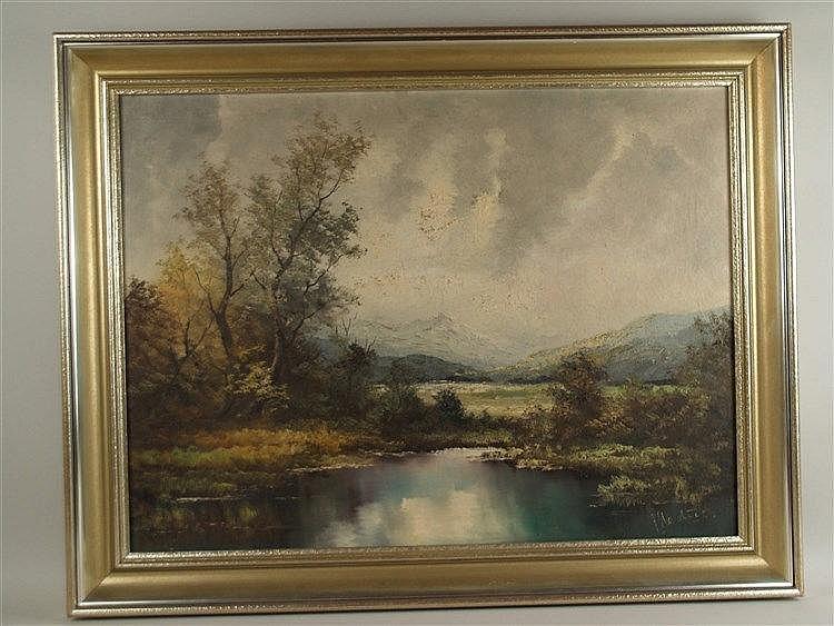 Medick - Altwasser in der Donauniederung, Öl auf Leinwand, ca. 60x80 cm, gerahmt