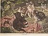 Konvolut Tierabbildungen - 3-tlg., eine Originalradierung von Kurt Meyer-Eberhardt ''Mutter und Kind (Angorakatzen)'', Plattenrand ca. 25x21 cm/ 2 Drucke ''Der Retter in der Not'' und ''Der kleine Patient'', ca. 13x16 cm, 19,5x26,5 cm, 2x in PP, alle