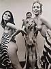 Székessy, Karin (geb.1938) - Weibliche Akte mit Zebra- und Löwenfell,Silbergelatineabzug, schwarz/weiß, ca.60x50cm, min.stockfleckig,ungerahmt