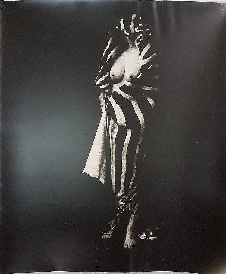 Székessy, Karin (geb.1938) - Weiblicher Akt im Zebrafell, Silbergelatineabzug, schwarz/weiß, ca.60x50cm, Ecken leicht geknickt,ungerahmt