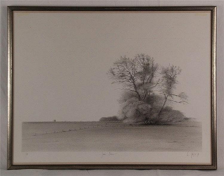 Grüger Ev (geb.1928 Altenburg, lebt und arbeitet in Hofheim/Taunus) - mit Bleistift von Hand betitelt ''Großer Baum'', datiert 1977, numeriert 1/80, signiert, ca.49/64cm, unter Glas gerahmt