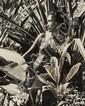 Adolphe Sylvain (1920-1991). Tahiti, 1950s.