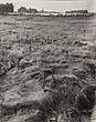 Photographs: Fulvio Roiter (1926) 'Charleroi,