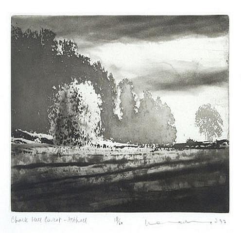 Norman Ackroyd (b.1938) chalk hill covert,