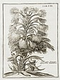 Pontedera (Julius) Anthologia, sive de floris
