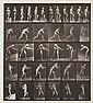 Eadweard Muybridge (1830-1904) A, Walking; B,