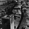 Paesaggio, Gianni Berengo-Gardin, €250