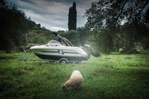 Bruno D'Alimonte - The Sheep and the Boat
