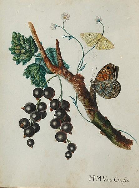 Maria Magrita van Os (Dutch, 1780-1862) Butterflies and blackcurrants