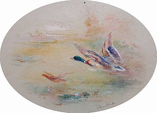 James Stinton (British, 1870-1961) Ducks in flight