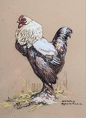Harry Rowntree (British, 1878-1950) Study of a cockerel, pastel and gouache, signed lower right, 34 x 25cm