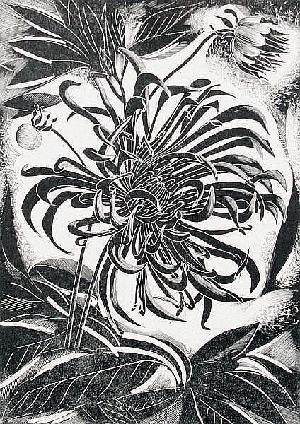 John Farleigh (British, 1900-1965) 'Cactus dahlia' (S)
