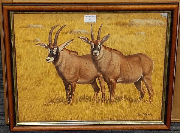 Robert MacIntosh Gemsbok; Roan Antelope