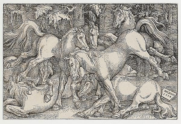 Hans Baldung (called Grien) (German, circa 1484-1545) Group of Seven Wild Horses Woodcut, 1534, on laid, 213 x 322mm (8 1/3 x 12 2/3in)(PL) unframed