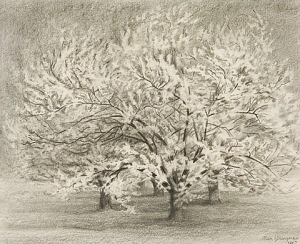 Nan Youngman, OBE (1906-1996) Study of an orchard, possibly at Caton