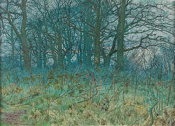William Fraser Garden (British, 1856-1921) A forest clearing