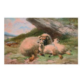 Thomas George Cooper (British, 1836-1901) Sheep in a rural landscape signed and dated 1880, watercolour 29 x 46 cm.