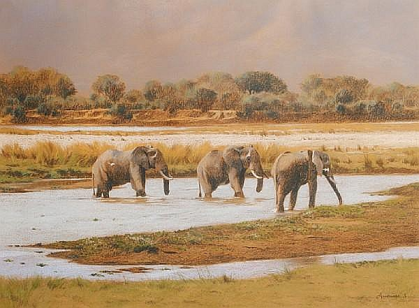 Kim Donaldson (South African, born 1952) Bull elephants coming out of Letaba River, Kruger