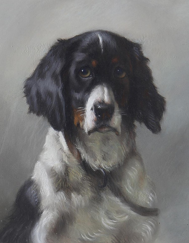 Thomas William Earl (British, active circa 1836-1885) Portrait of a spaniel