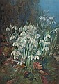Katherine (Kate) Cameron, RSW RE (British, 1874-1965) February snowdrops, Candlemas, Katherine Cameron, Click for value