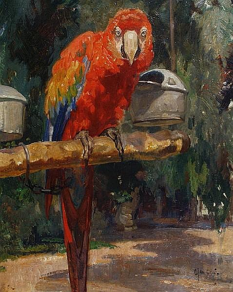 Cornelis Jan Mension (Dutch, 1882-1950) Parrot