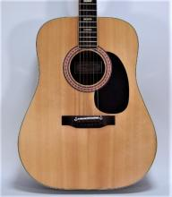 Angelica 6810 Hand Made Acoustic Guitar