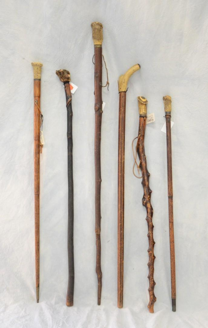 Walking stick canes and walking sticks pinterest - 6 Walking Sticks With Antler Handles Longest 41 1 2 Quot
