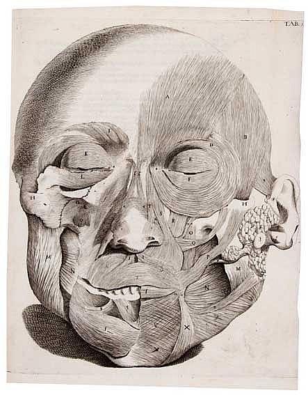 ANATOMY -- SANTORINI, G.D. Observationes anatomicæ. Venice, G.B. Recurti, 1