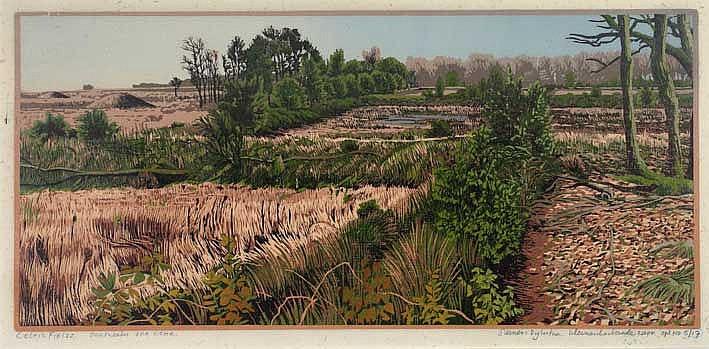 DIJKSTRA, Siemen (1968). 'Celtic fields omstreeks 300 v. Chr.' 2004. Cold.
