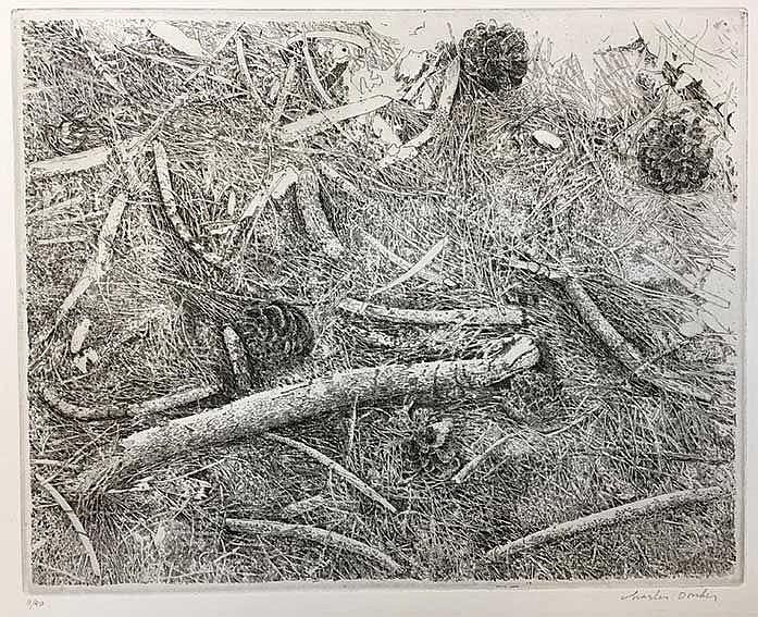 DONKER, Charles (1940). 'Bosgrond met dennenappels en houtjes'. (2001). Etc