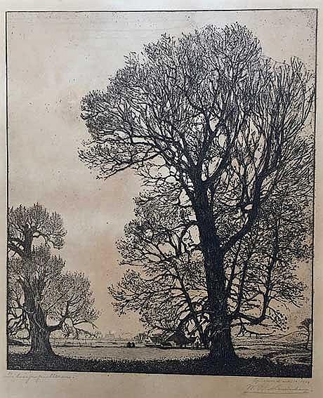NIEUWENKAMP, Wijnand Otto Jan (1874-1950). 'Zilverpopulieren'. Etching on J