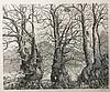 GELDER, Dirk van (1907-1990). 'Drie oude bomen'. 1974. Etching on light gre