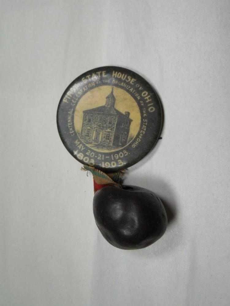 Unusual 1903 Ohio Statehouse buckeye Pin