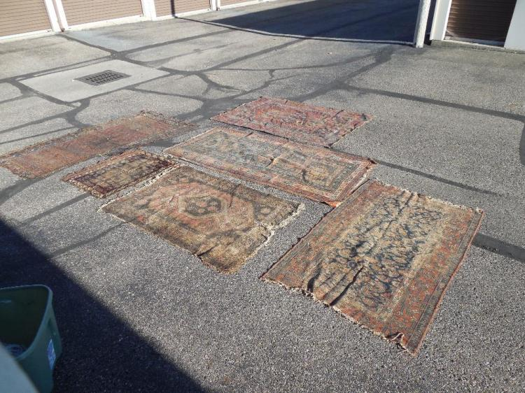 Group Lot of 6 Early Wool Persian Carpets Rugs