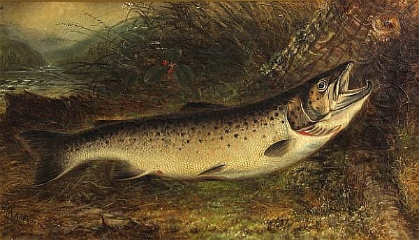 Samuel A. Kilbourne (American, 1836-1881) Trout on a river bank, 1877 10 x 18in
