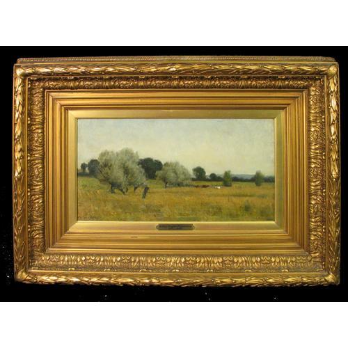 Arthur Douglas Peppercorn: A landscape, oil on canvas