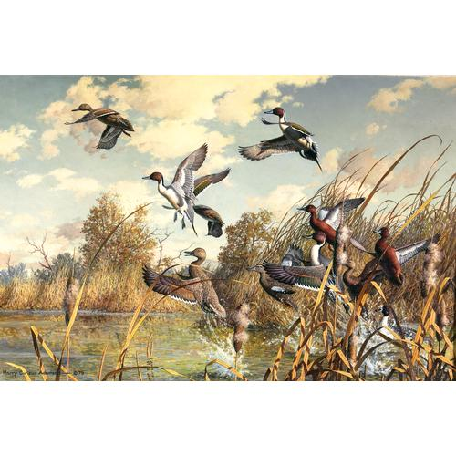 Adamson Wildlife Oil Painting