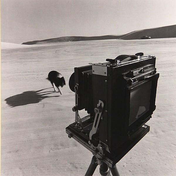 Jack Welpott (American, 1923-2007); White Sands, New Mexico;
