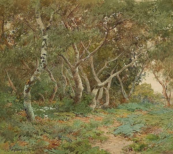 Sydney Janis Yard (American, 1855-1909) Oak grove 16 x 18in