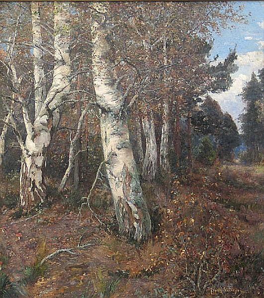 Franz Schreyer (German, born 1858) Birch trees in an autumn wood 35 1/2 x 32 3/4in