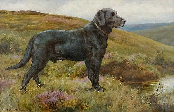 Herbert Thomas Dicksee, R.E. (British, 1862-1942) Old Bridge Bob; a black Labrador Retriever 14 1/2 x 22 1/2 in. (37.3 x 57.1)