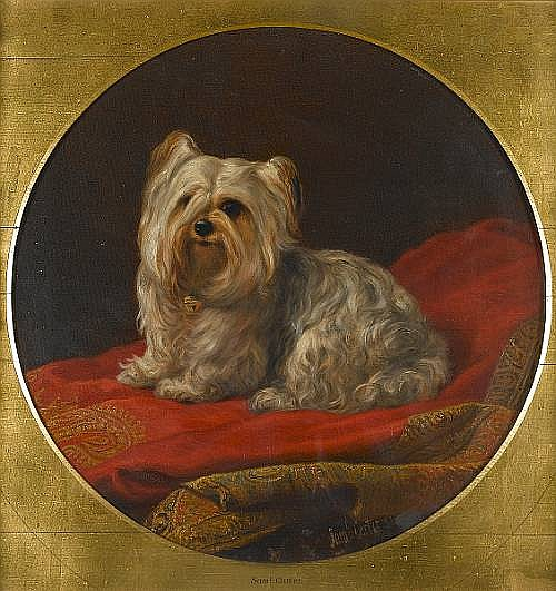 Samuel John Carter, ROI (British, 1835-1892) A Yorkshire Terrier on a divan 19 x 19 in. (48.3 x 48.3 cm.) painted circular