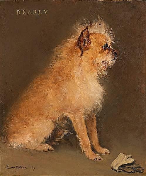 Eugene van Gelder (Belgian, born 1856) Portrait of the Brussels Griffon 'Dearly' 23 x 19 in. (58.5 x 49.5 cm.)