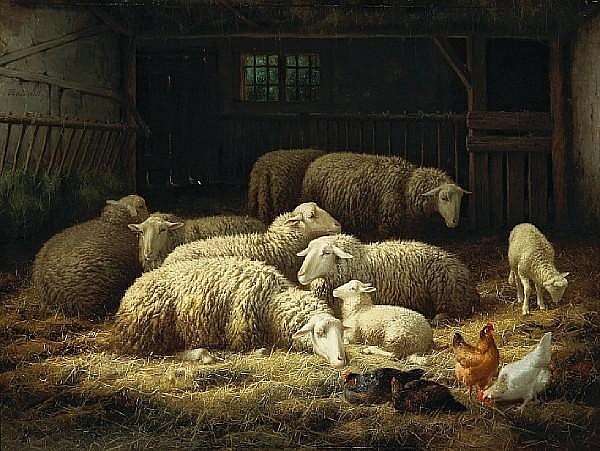 Theo van Sluys (Belgian, 1849-1931) Ewes, lambs and chickens in a barn 23 3/4 x 31 1/2in (60.3 x 80cm)