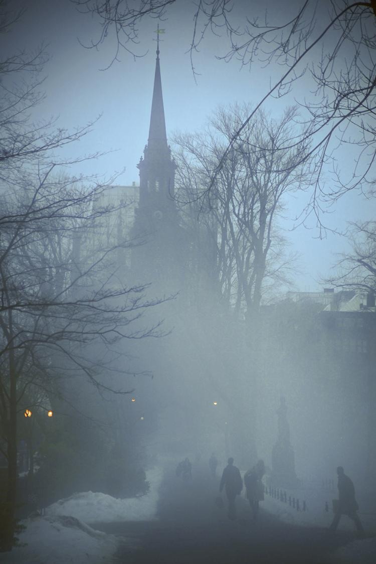 Foggy Day in the Park by Shona Keir